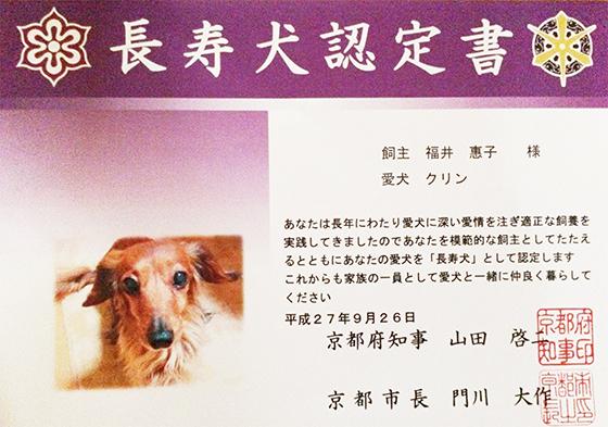 愛犬・愛猫の 健康寿命20年を目指す!ペットの健康を考えたベースサプリメント開発プロジェクト