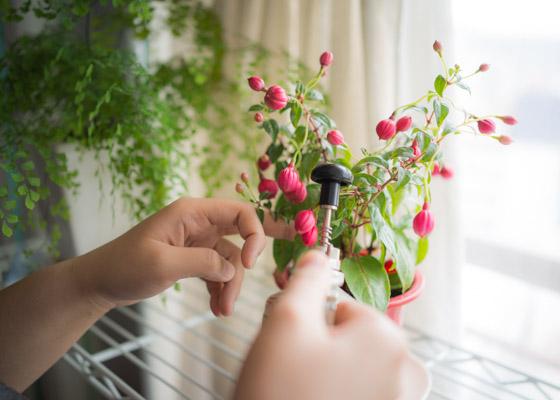 花をつけること、実をつけること。
